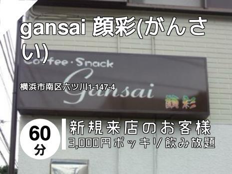 gansai 顔彩(がんさい)
