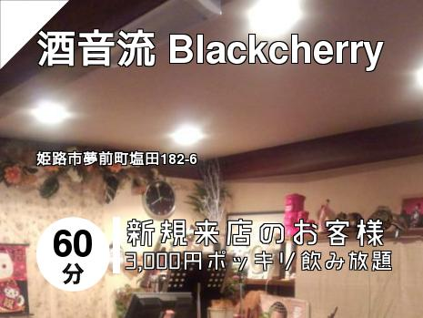 酒音流 Blackcherry