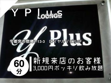 Y Plus